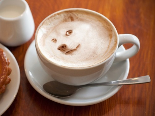 doge-coffee